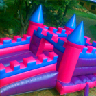 Fairy Jumping Castle for Sale