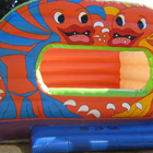 Fish Dome Jumping Castle for Sale