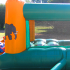 Ballpond Jumping Castle for Sale