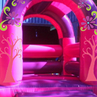 Little Miss Jumping Castle for Sale