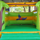 Tropical Jumping Castle for Sale